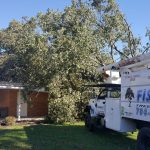 fisher truck with tree on house
